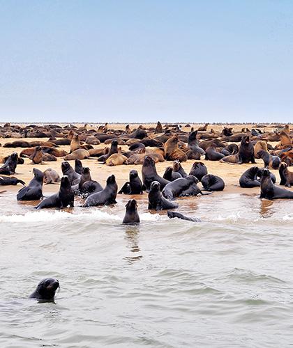 Viaje de lujo a Namibia