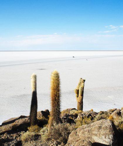 viaje chile bolivia y perú
